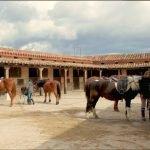 Hotel Los Rastrojos paseo a caballo, casas rurales para viajar con niños en Burgos