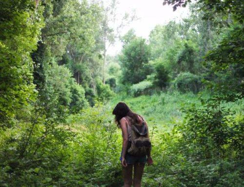 10 ideas para hacer turismo en Castilla y León en septiembre