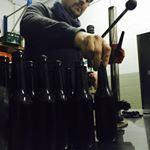 Abeja cerveza artesana en Castilla y León