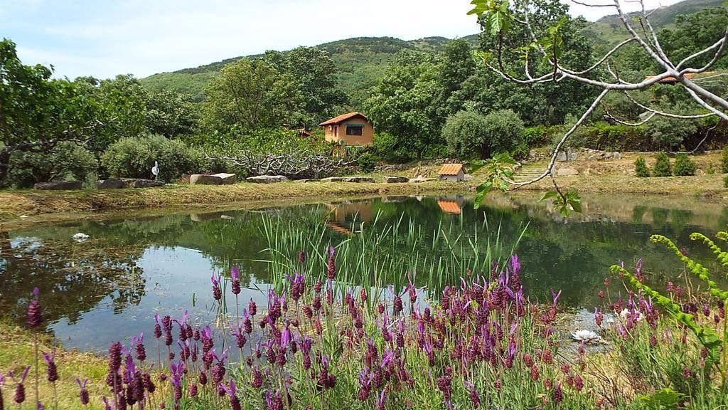 Hotel Rural El Camino entorno