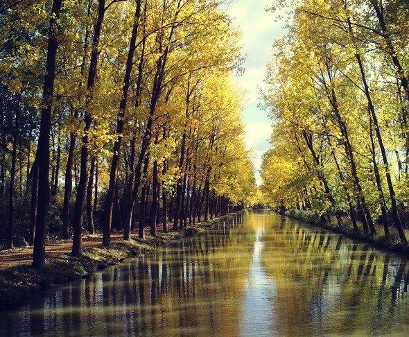 Senda para pasear en canal de castilla, medina de rioseco